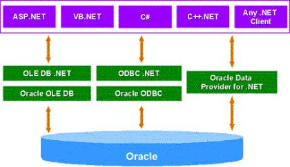 Oracle .NET Connectivity